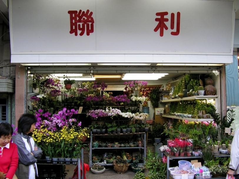 0053-HKKowloonMongKokFlowerStreet